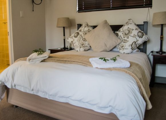 Luxury Twin Suite, No. 5